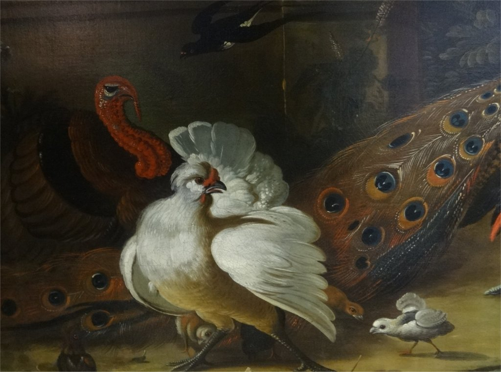 O/C OLD MASTER, EXOTIC BIRDS, CHRISTIES PROVENANCE - 4