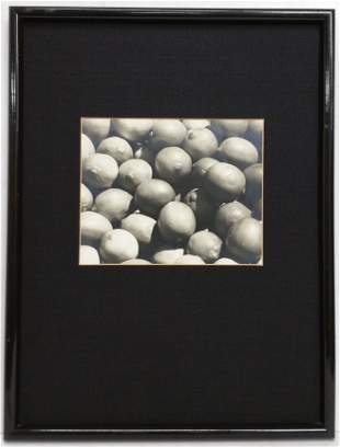 Vintage Black and White Photograph Lemons
