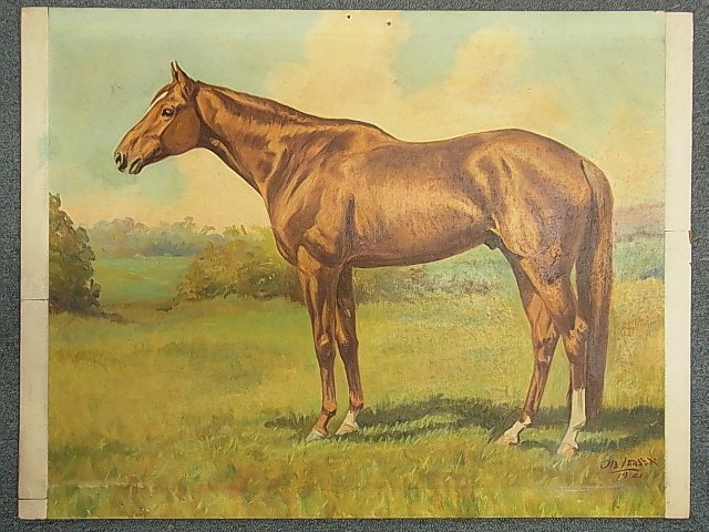 Ole Larsen Equestrian Horse WHIRLAWAY 1941 Painting CNX - 2