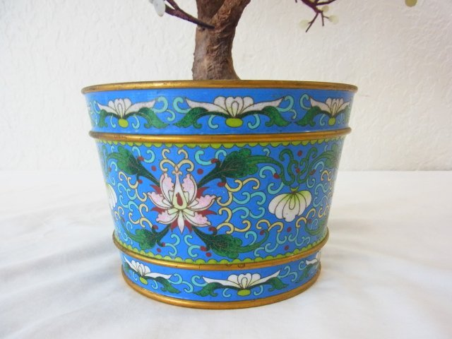 Vintage Chinese Jade Dogwood Bonsai Tree within Blue Cl - 6