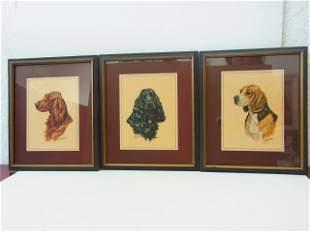 Set 3 Ole Larsen signed Canine Portraits Irish Setter C