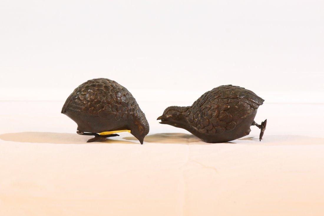 Bronze Grouse Chicks