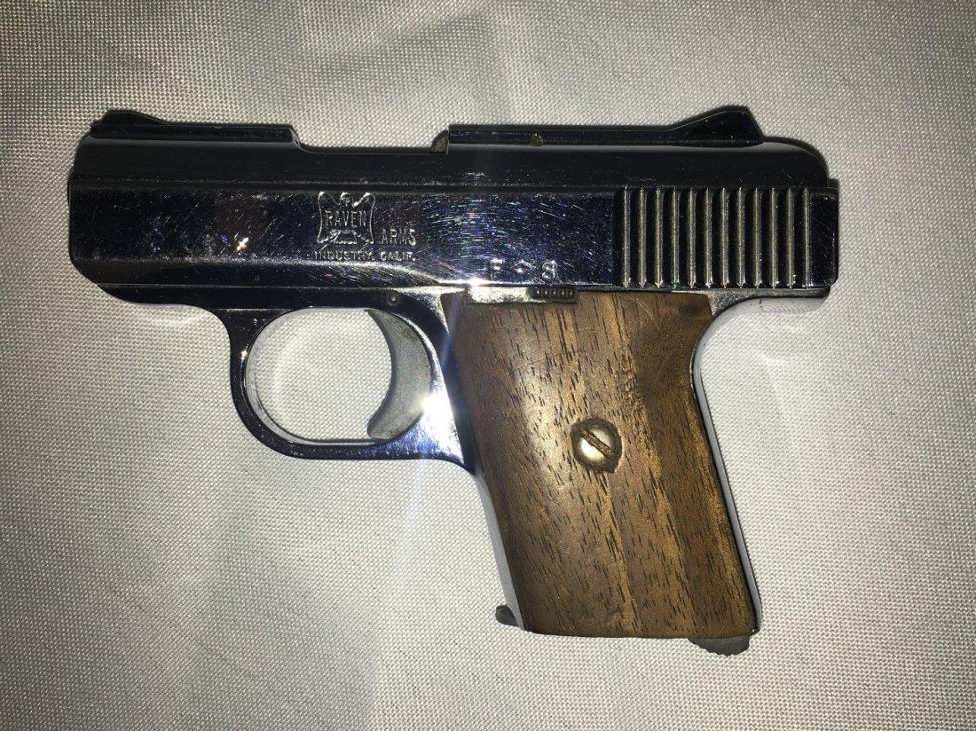RAVEN ARMS MODEL MP-25