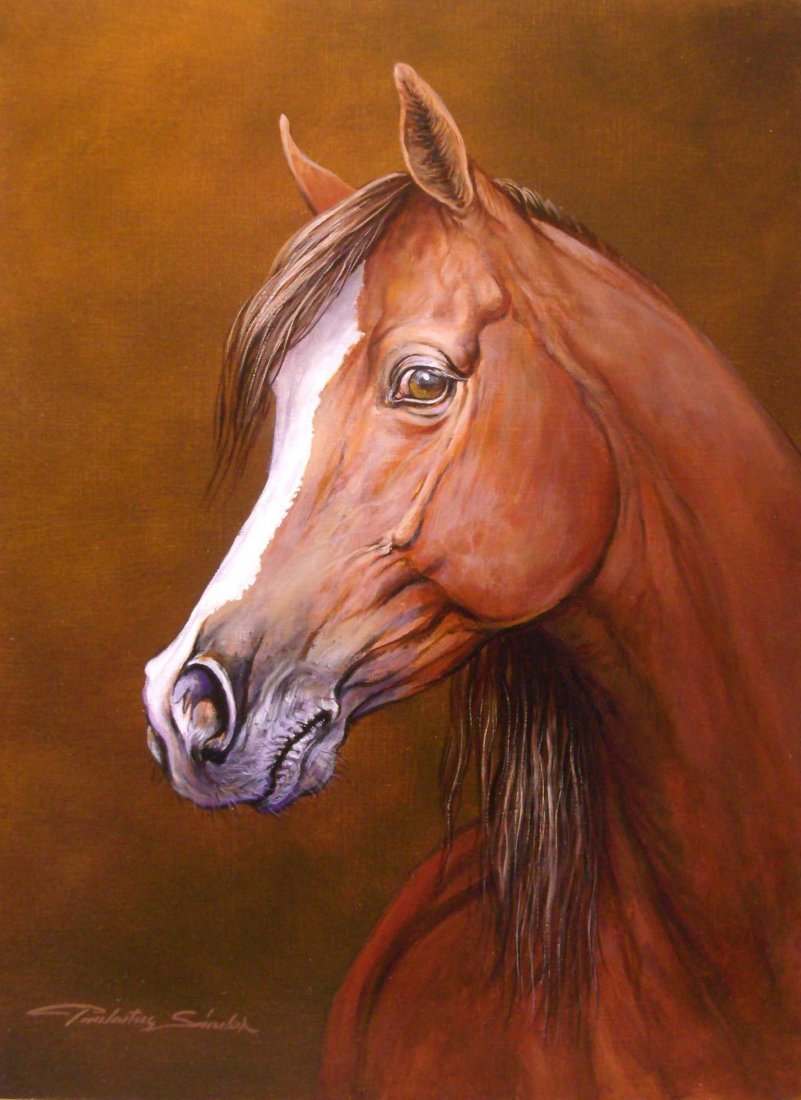 17: Sandor Pankotai: Horse I