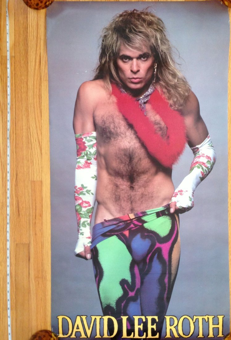 DAVID LEE ROTH - VINTAGE ROCK POSTER