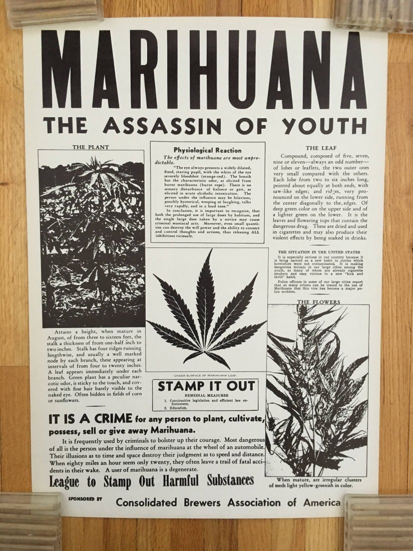 MARIHUANA - THE ASSASSIN OF YOUTH