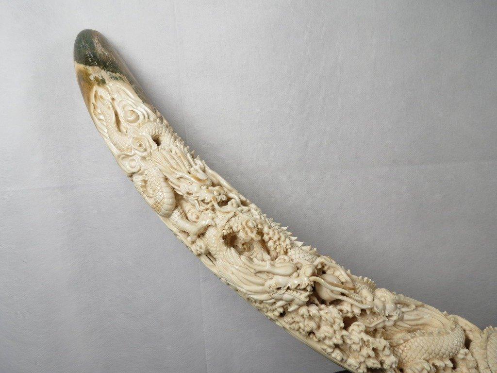 1166: Mammoth Ivory Tusk - 4
