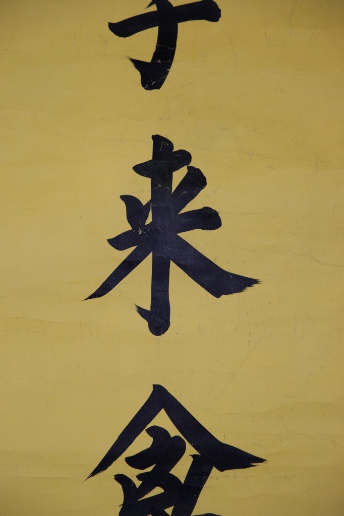 Chinese Calligraphy Scrolls - 5