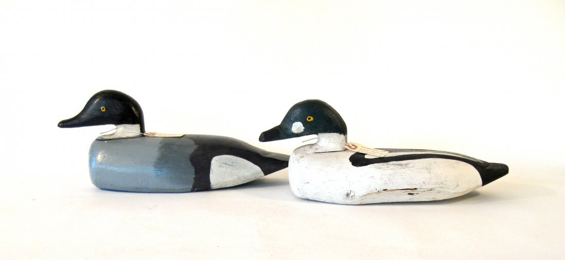Pair of carved and pained male and female Golden eye du