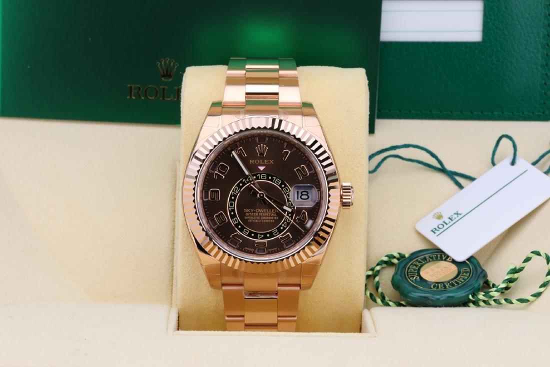 Rolex Oyster Perpetual Sky-Dweller 18K Watch - 2
