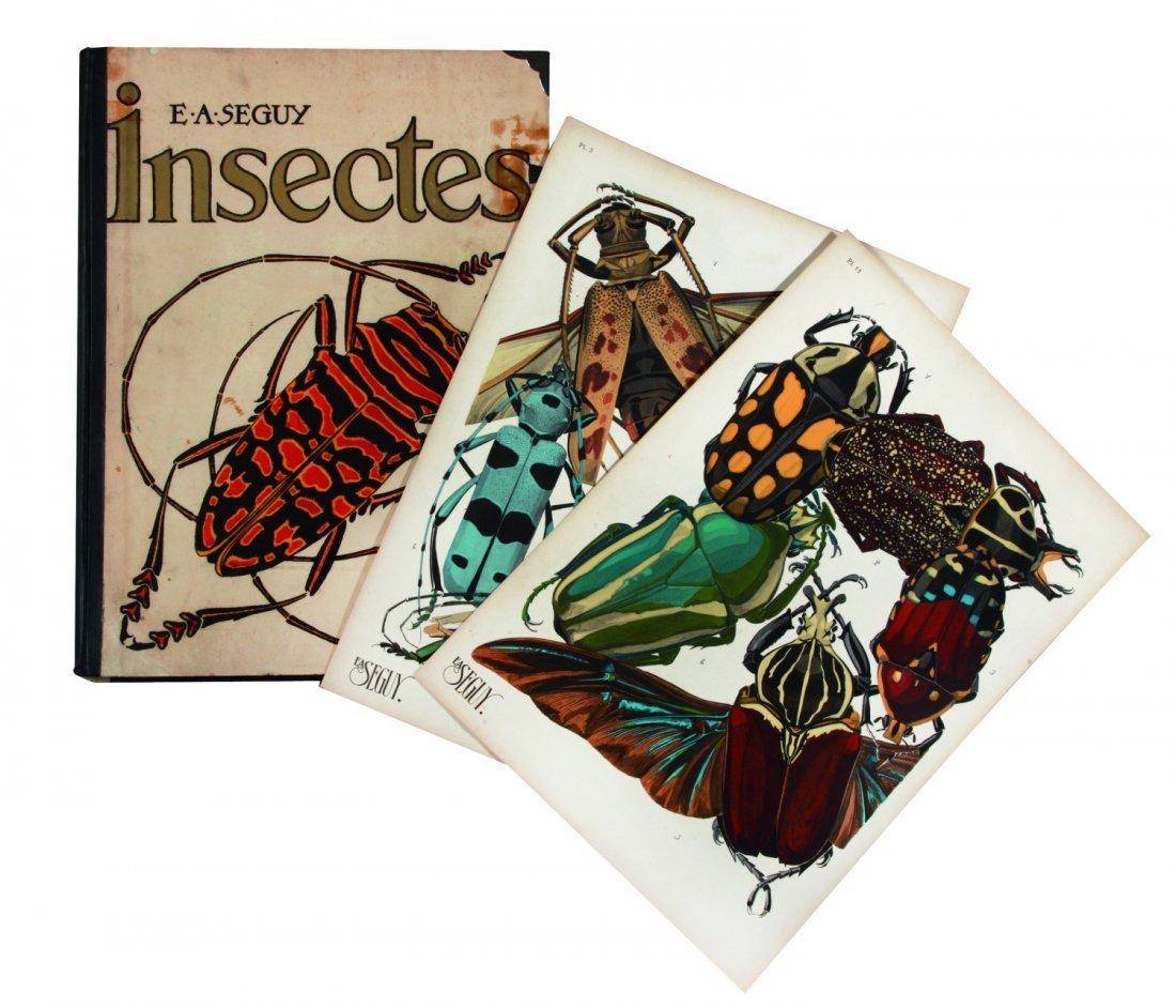 Eugene Alain Seguy Insectes. Vingt planches en