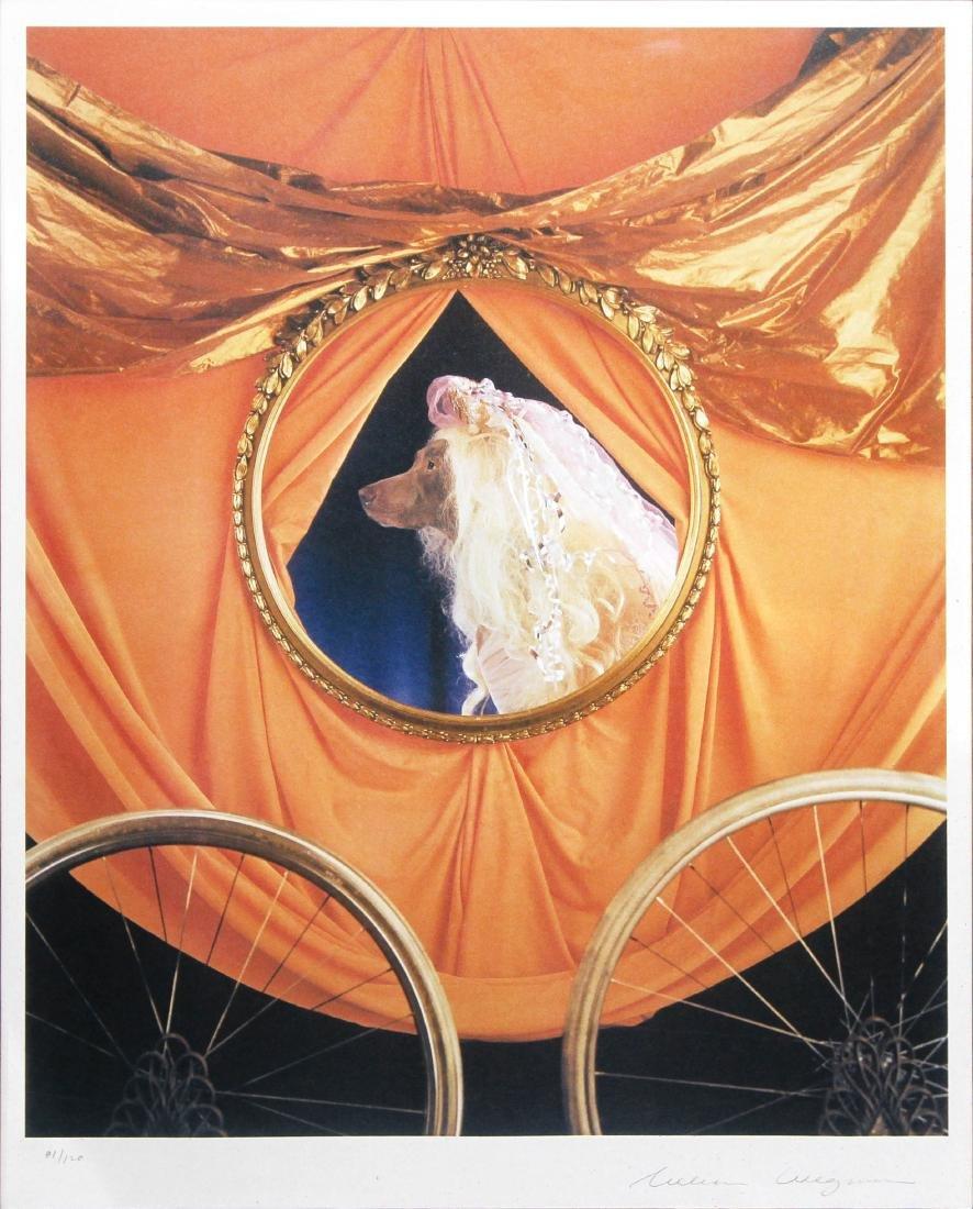 William Wegman - Cinderella