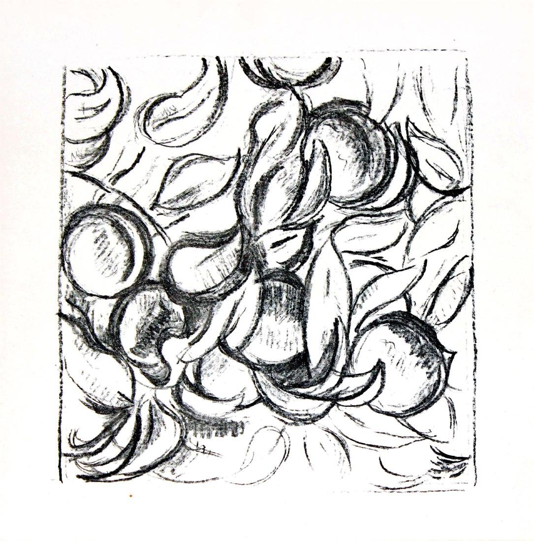 Henri Matisse - Odalisque a la Jupe de Tulle
