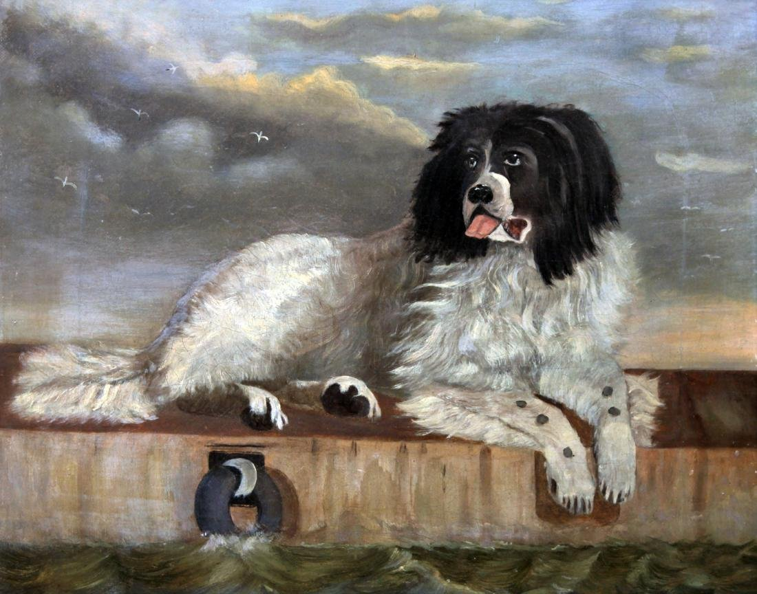 Unknown Artist - Newfoundland Dog Painting