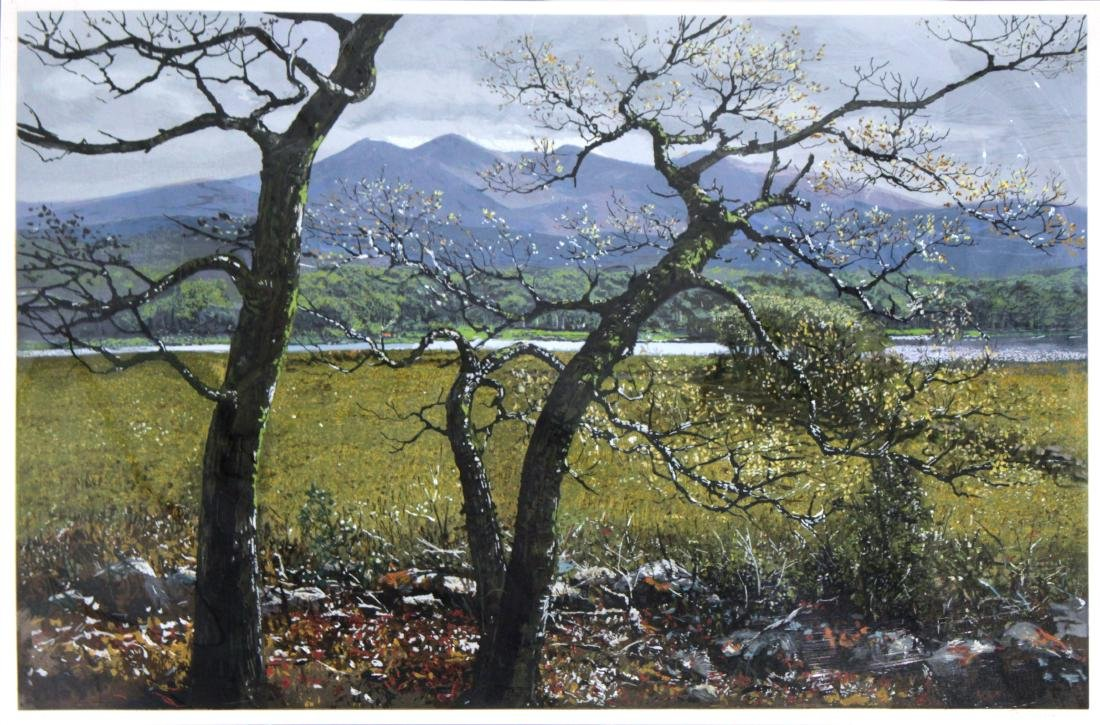 Peter Ellenshaw - Kerry Springtime