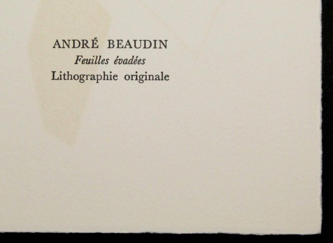 Andre Beaudin - Feuilles evedees - 2