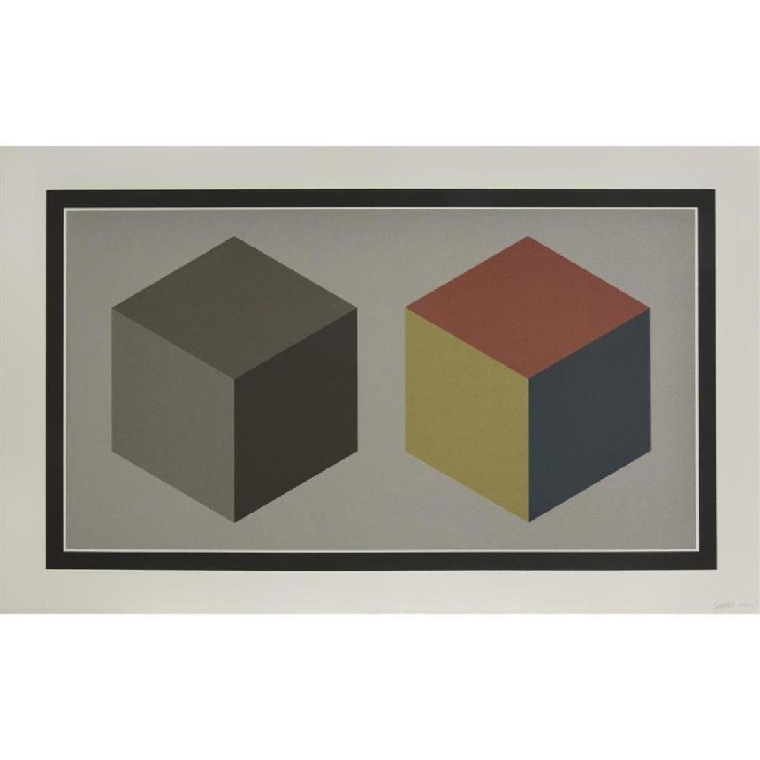 Sol Lewitt - Double Cubes in Gray and Colors