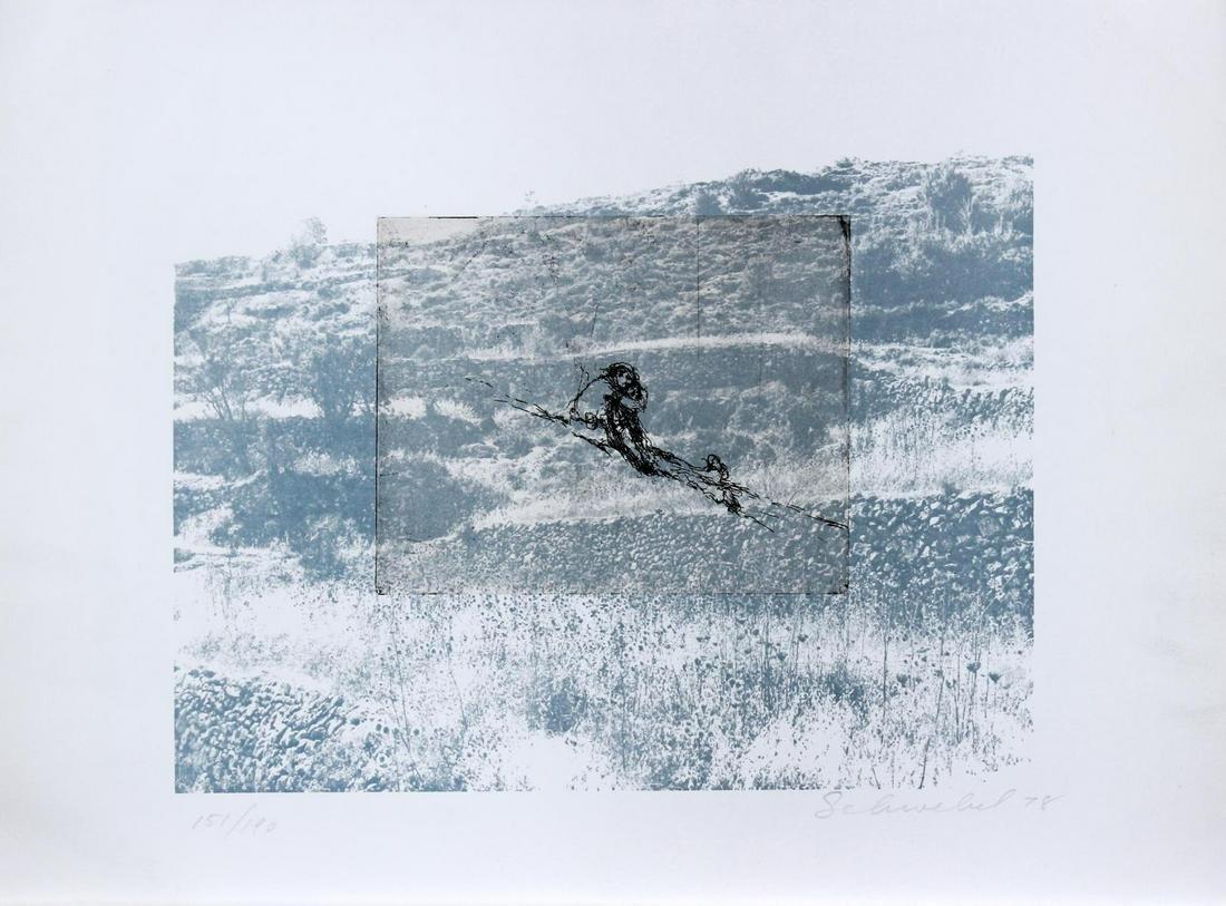 Ivan Schwebel - Untitled