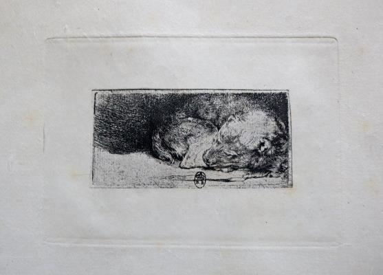 Rembrandt van Rijn (after) - Sleeping Puppy