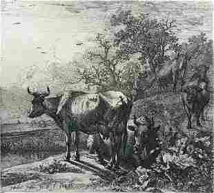 Paul Potter (After) - The Herdsman
