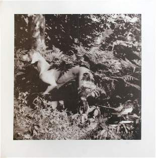 William Wegman - Untitled