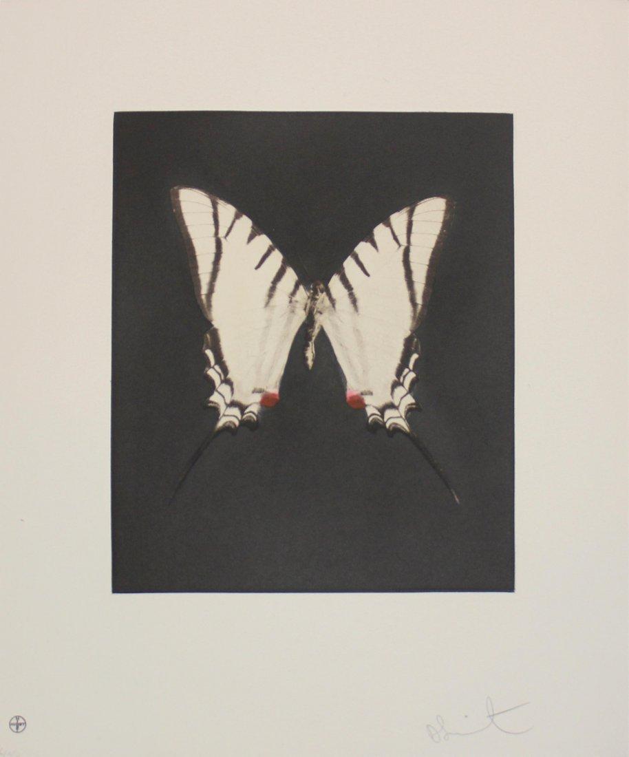 """Damien Hirst """"Spirit"""" Butterfly Etching"""