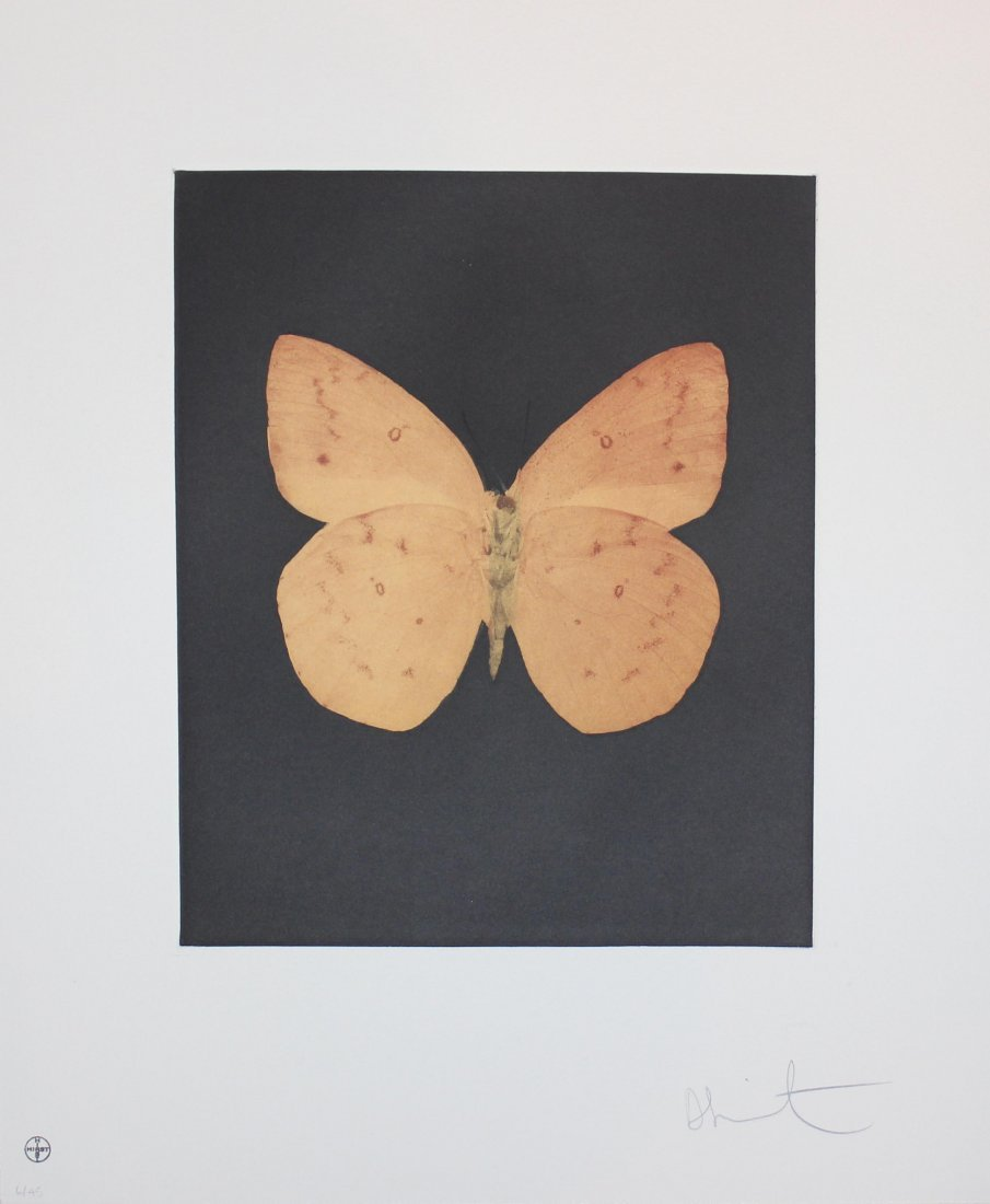 """Damien Hirst """"Prosperity"""" Butterfly Etching"""