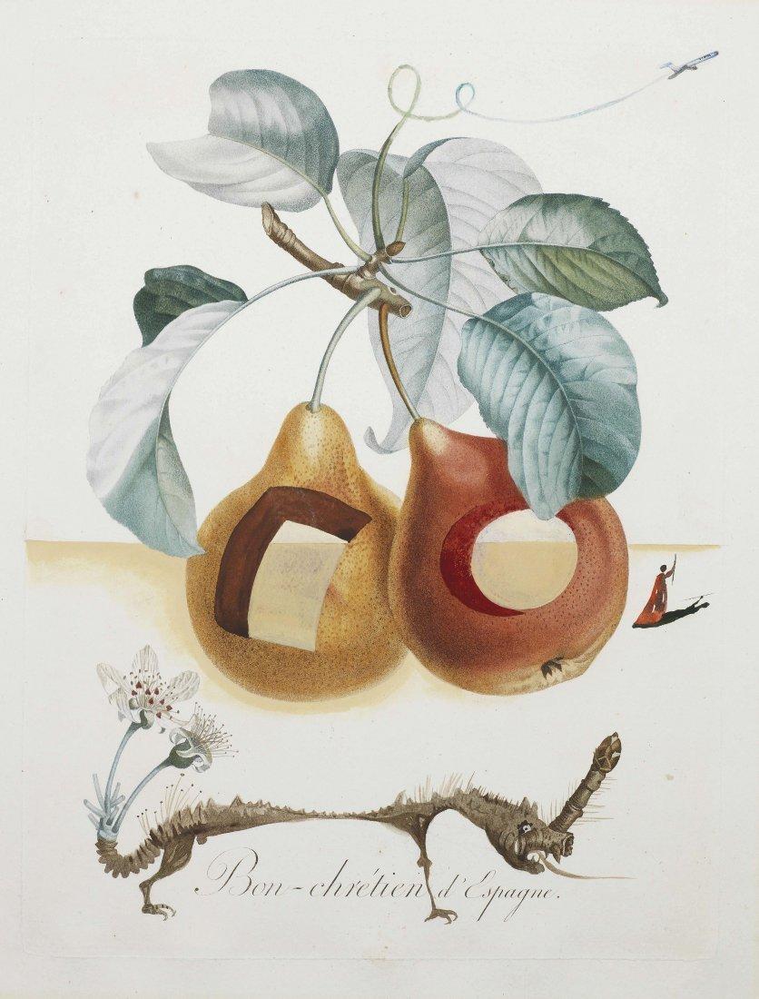 "Salvador Dali, ""Fruits Trouees"