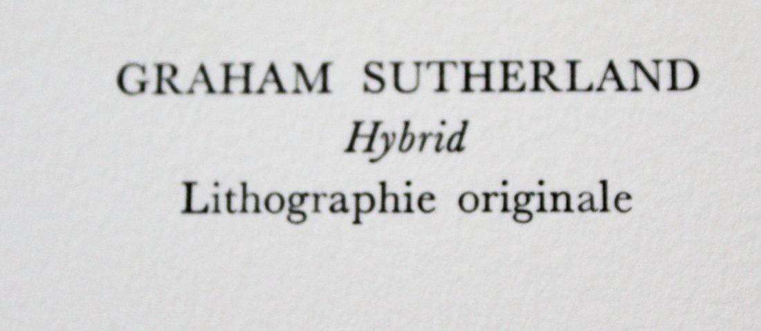 "Graham Sutherland - ""Hybrid"" from Souvenirs de - 2"