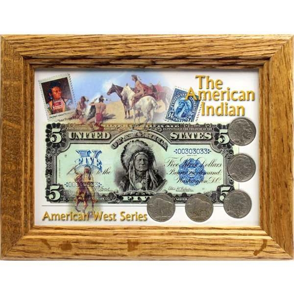 Buffalo Nickel Coin Set & American Indian Frame