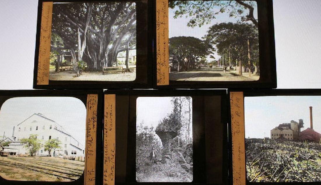 12 Lantern Slides - Hawaii by William Rau