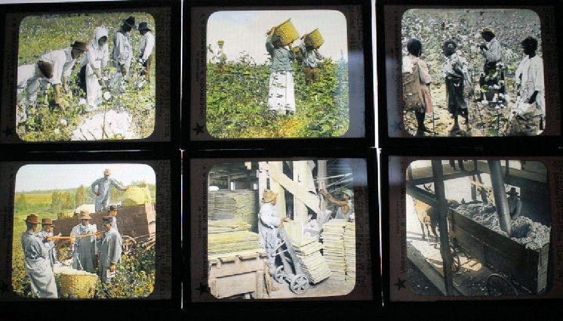 21 Lantern Slides - Cotton Industry
