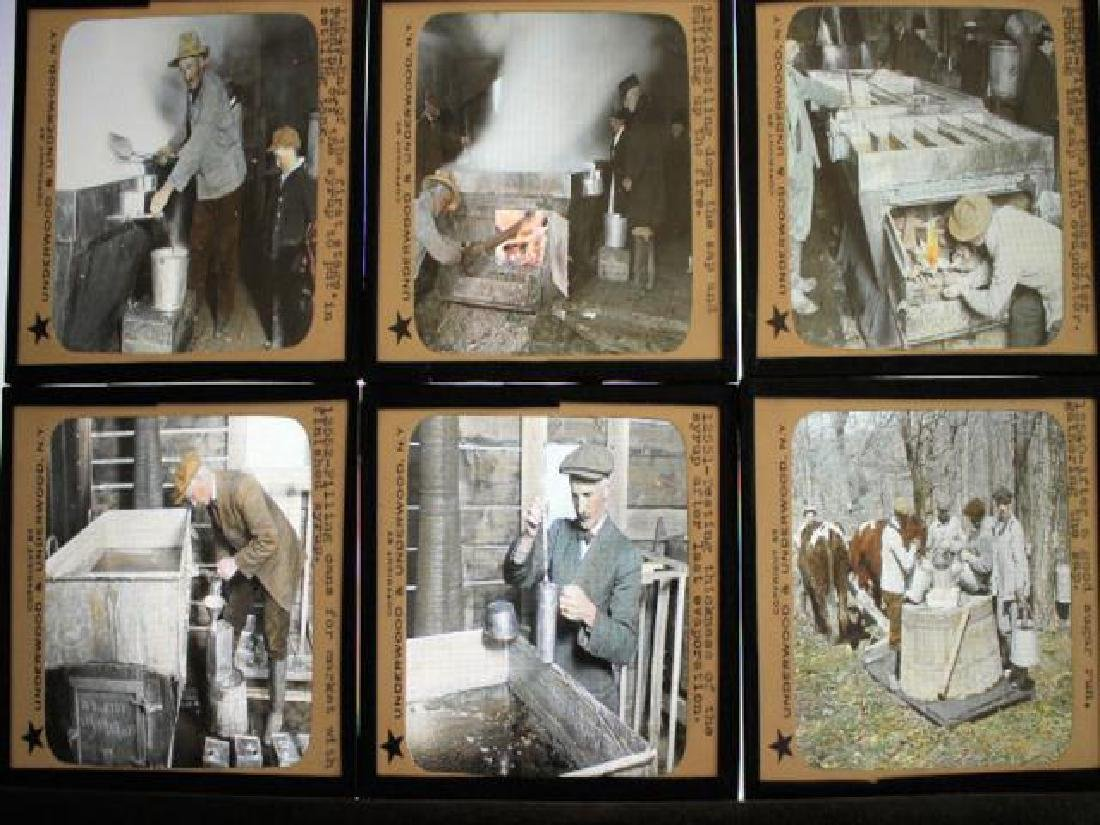 18 Lantern Slides -Maple Sugar Processing Industry