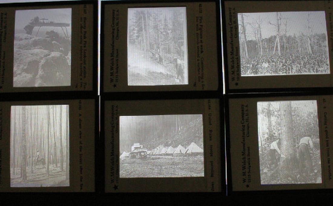 33 Lantern Slides - Forest, Fishing, Lumbering
