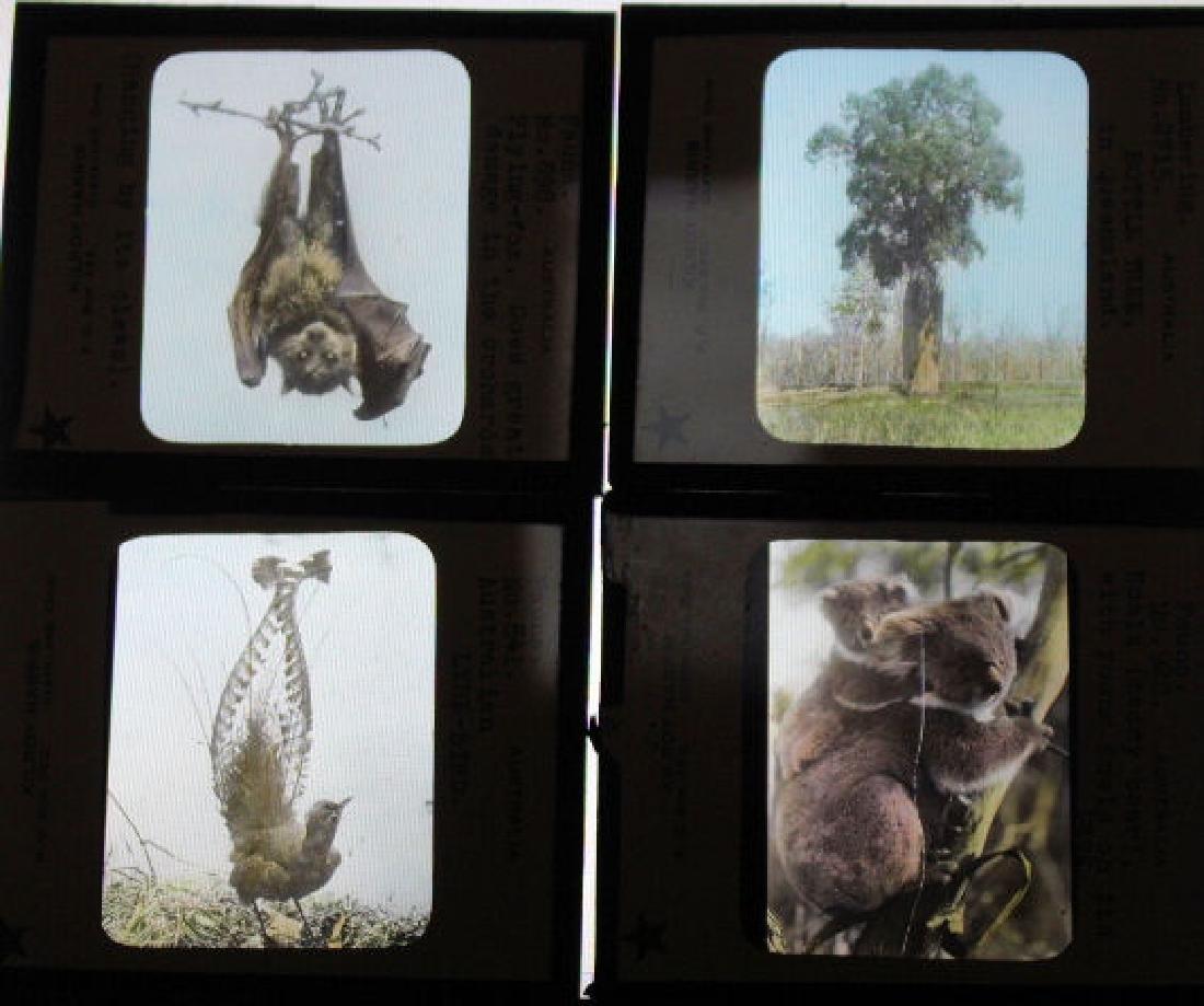 18 Lantern Slides - Australia