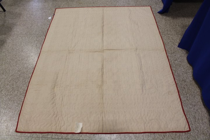 19th C Child's Red & White Quilt - Wild Goose Chase - 6