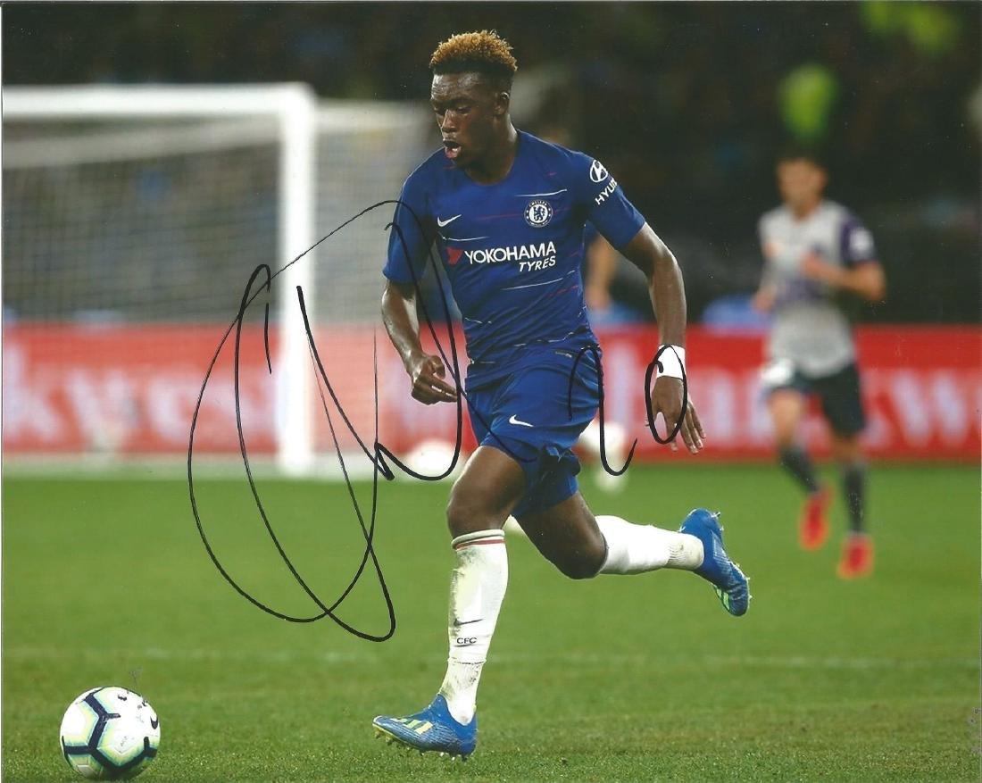 Callum Hudson Odoi Signed Chelsea 8x10 Photo. Good