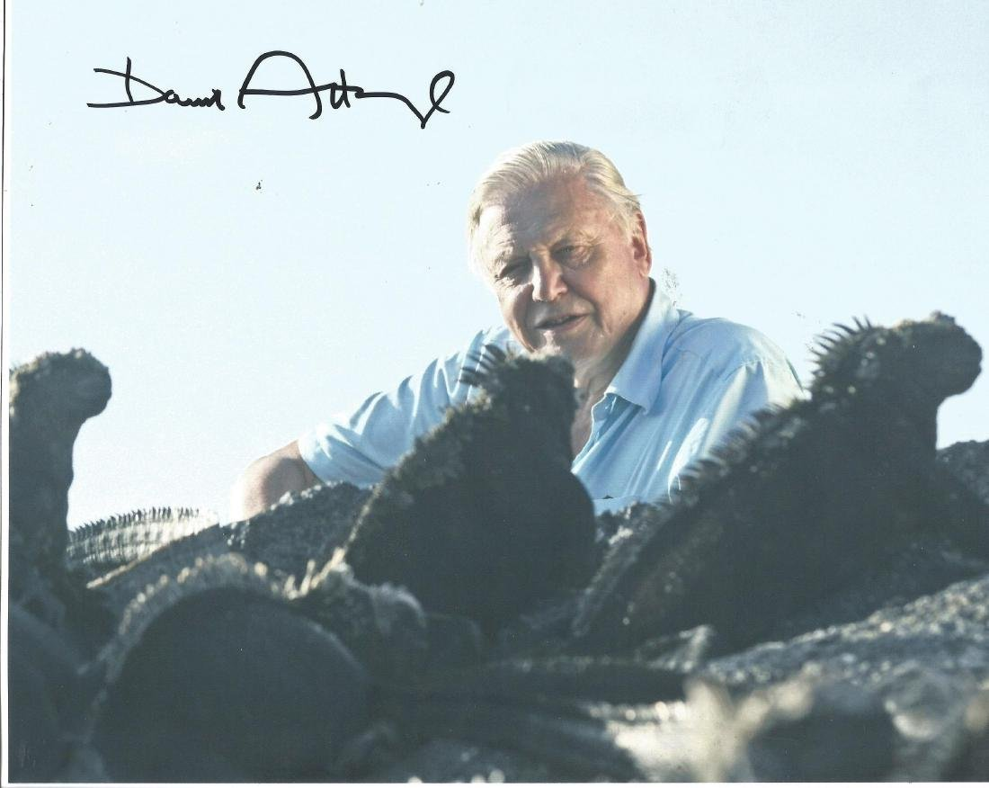 Sir David Attenborough 8x10 signed colour photo very