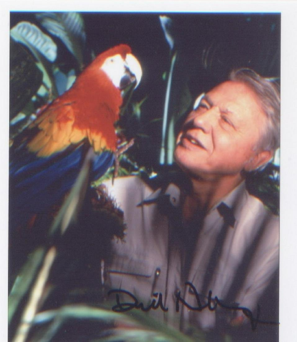 David Attenborough. Fabulous signed postcard sized