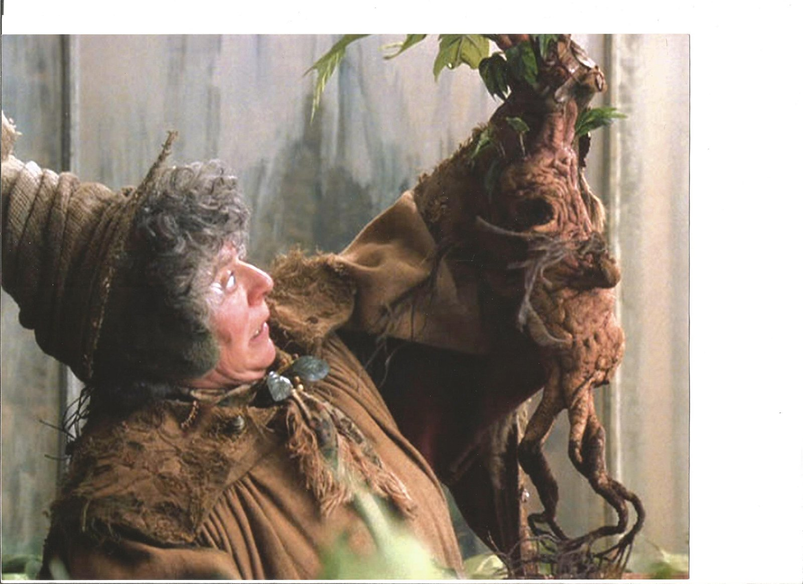 Miriam Margolyes signed white card with 10x8 colour