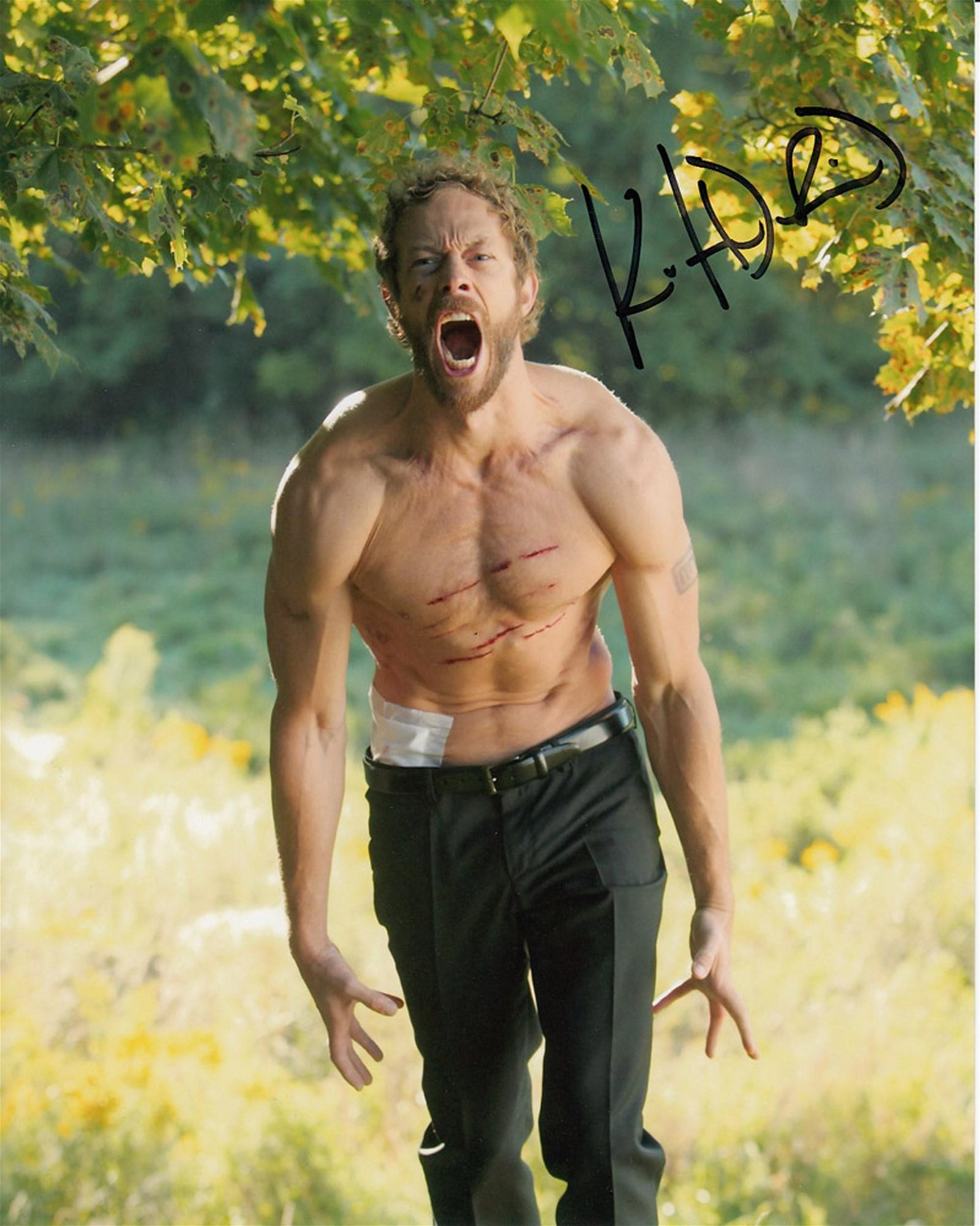 Blowout Sale! Lost Girl Kris Holden Ried hand signed