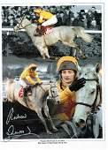 Horse Racing Richard Dunwoody signed 16x12 montage