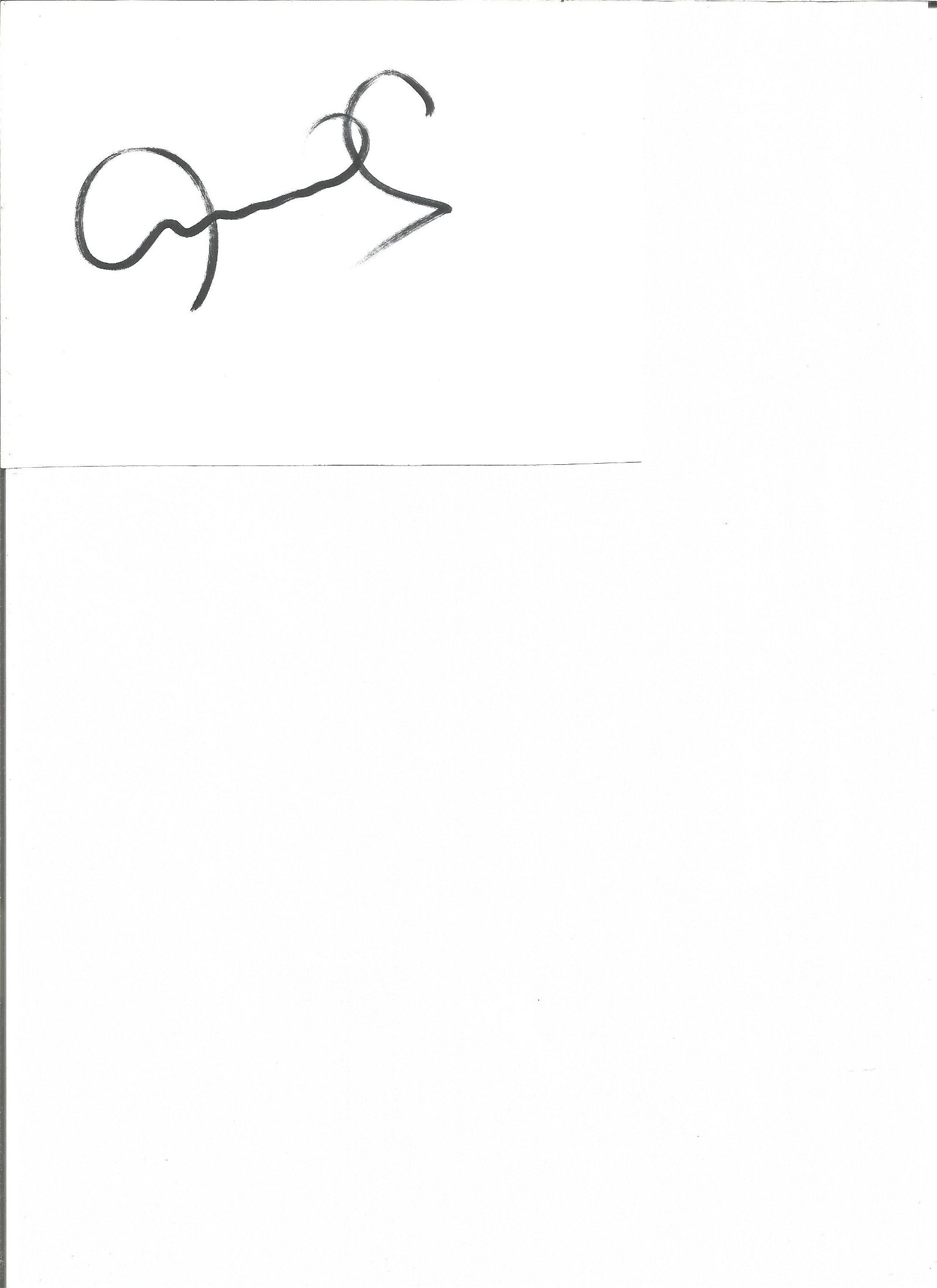 Peter Schmeichel Manchester United Legend Signed Page.