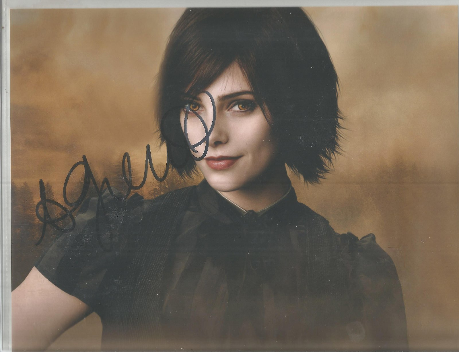 Ashley Greene signed 10x8 colour photo. Good Condition.