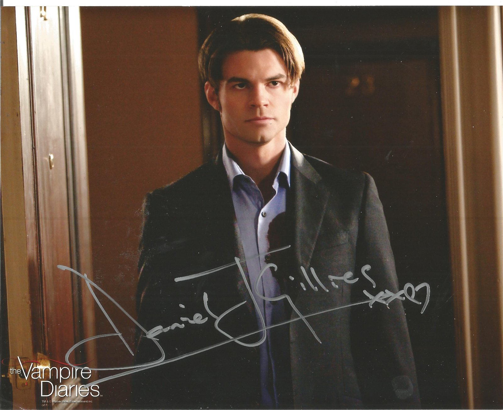 Daniel Gillies signed 10x8 colour photo from Vampire