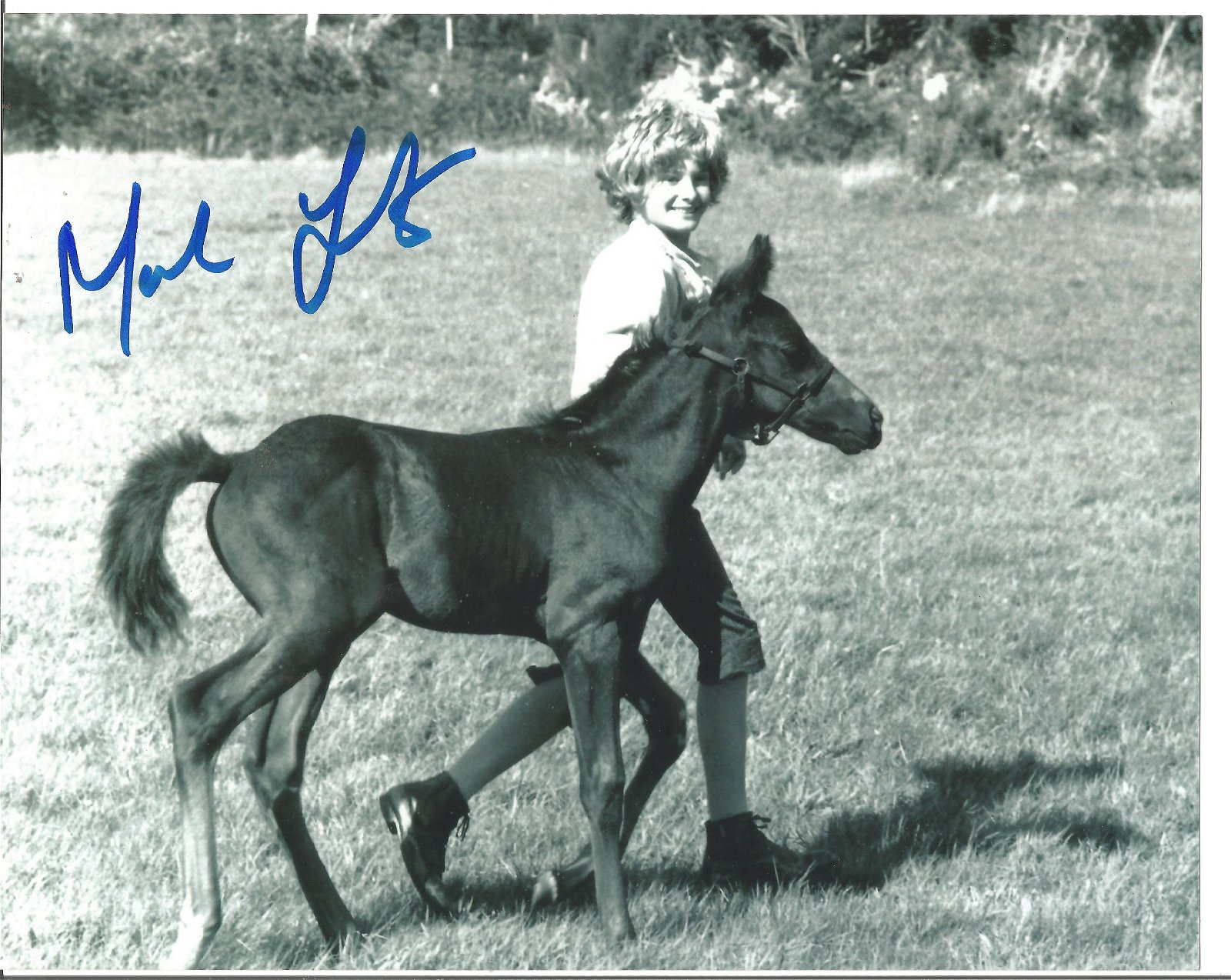 Blowout Sale! Mark Lester Black Beauty hand signed 10x8