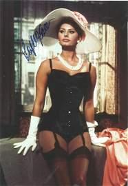 Sophia Loren signed 12x8 colour photo. Sofia Villani