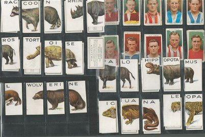 WD and HO Wills cigarette card collection on 15 album