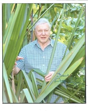 David Attenborough signed 10 x 8 inch colour photo, in