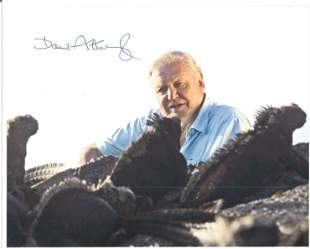 David Attenborough signed 10 x 8 inch colour photo,